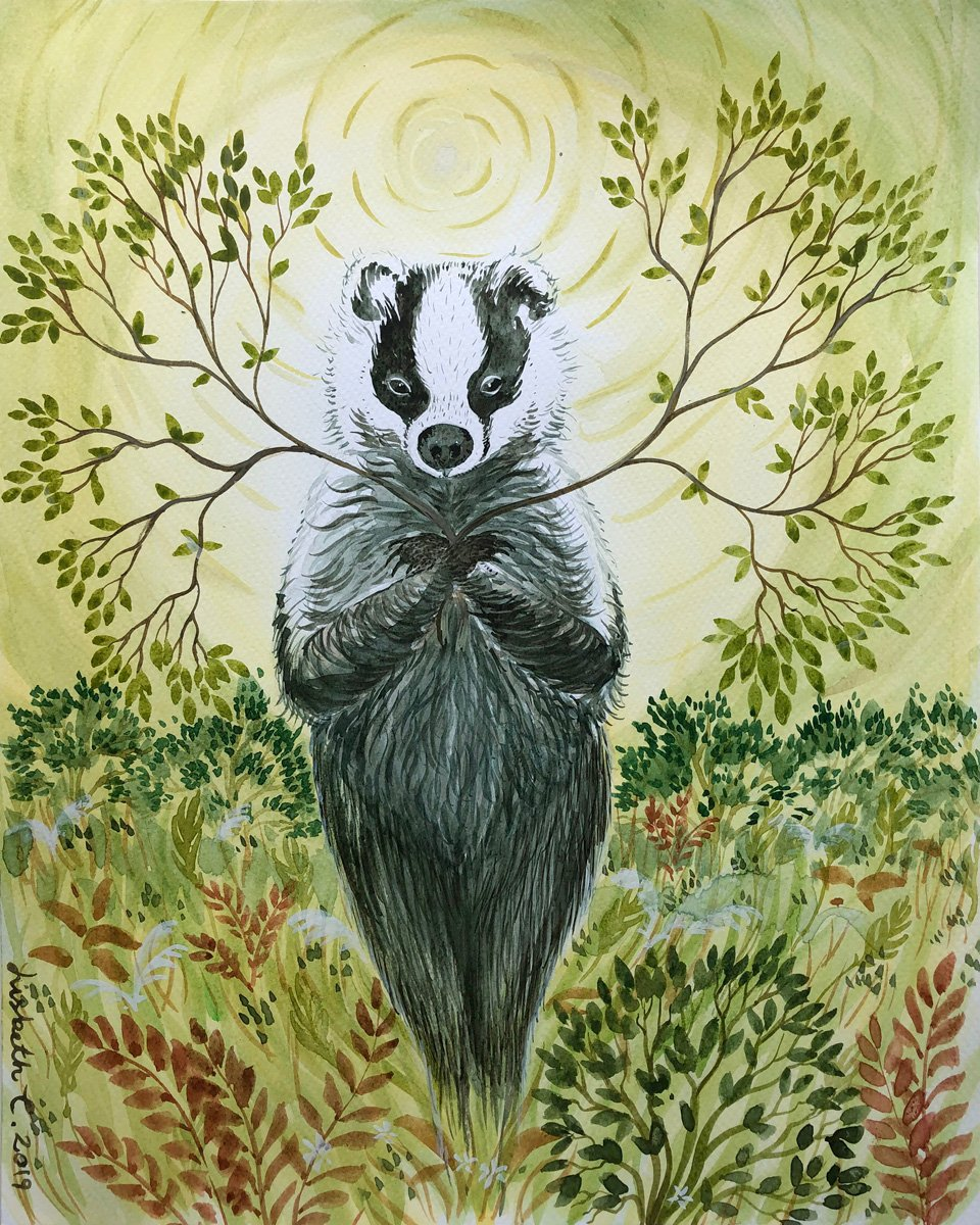 Badger says the trees are the angels of the forest