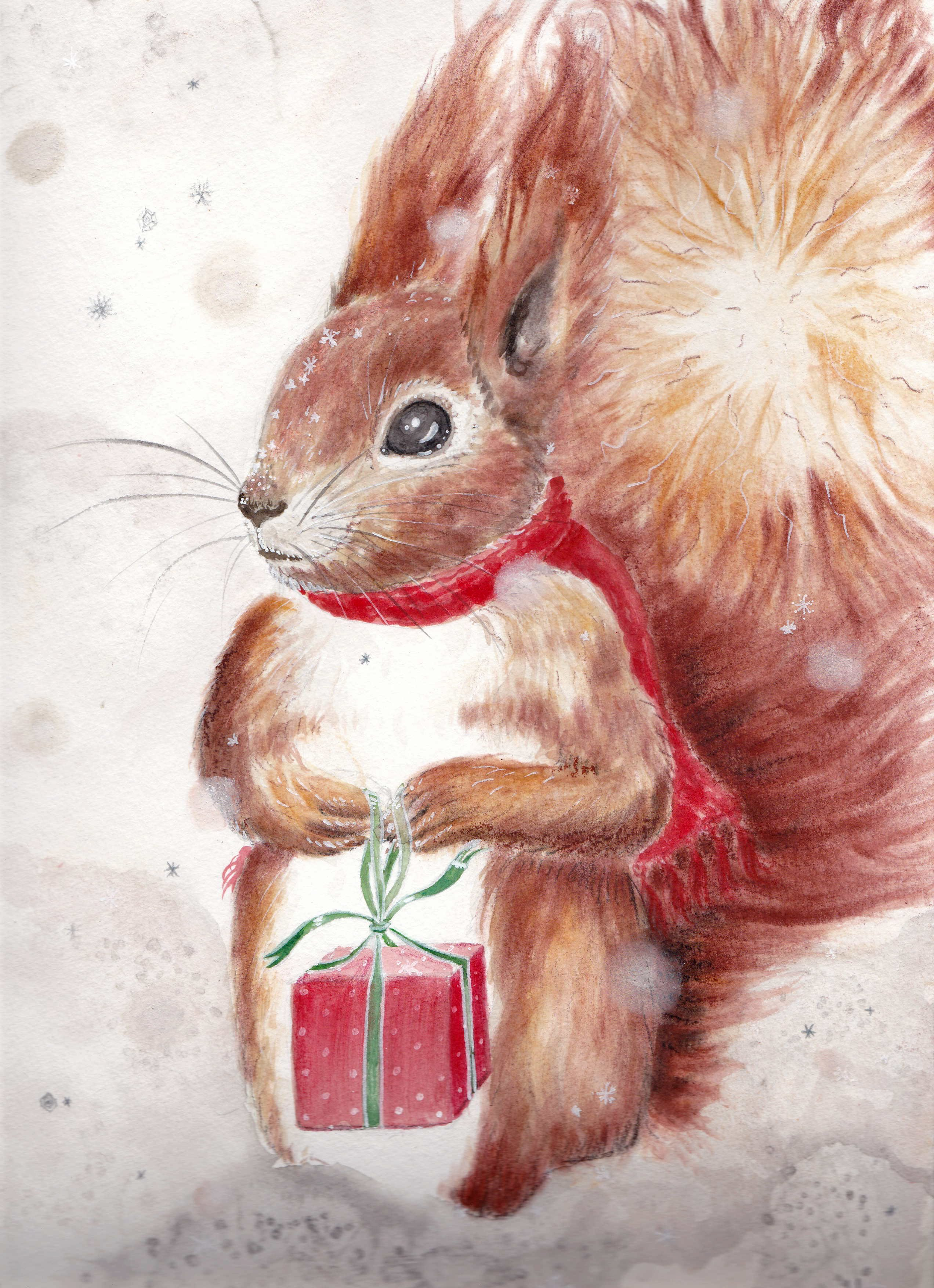 Squirrel with present - Christmas